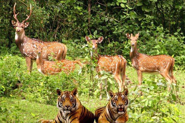 Uttarakhand - Nainital Mussoorie Corbett Park Tour