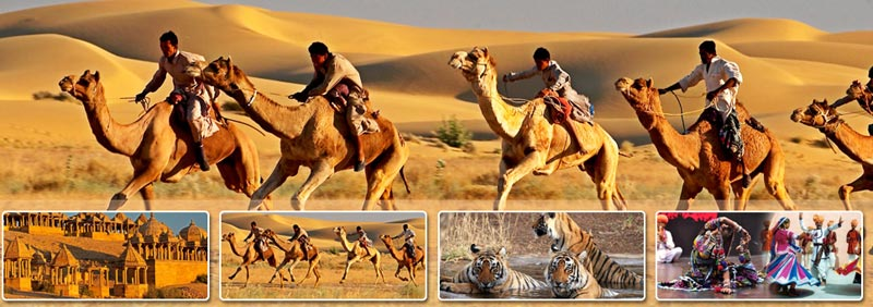 Rajasthan Package