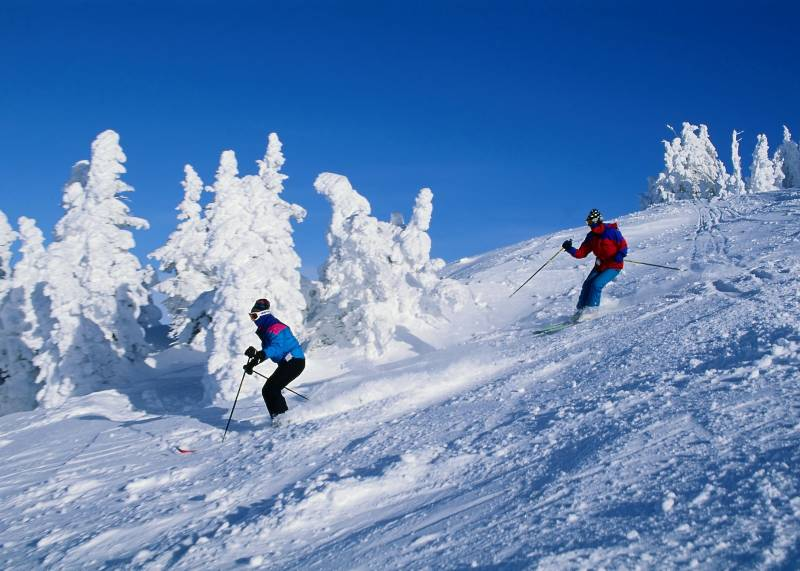 Manali Honeymoon Package With 3 Star Hotels