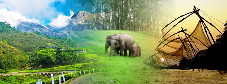 Glorious Kerala Holiday Package Tour Code: Hp004