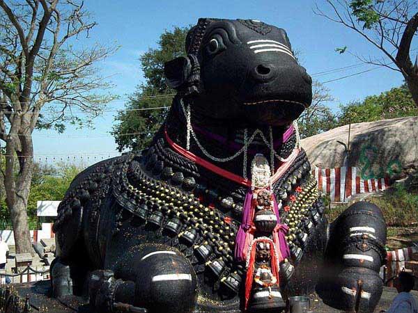 Glorious South India 19 Days Tour