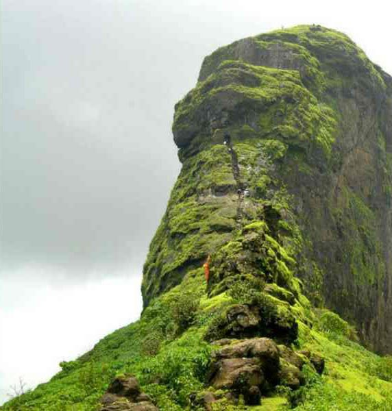 Harihar Fort Trek Tour