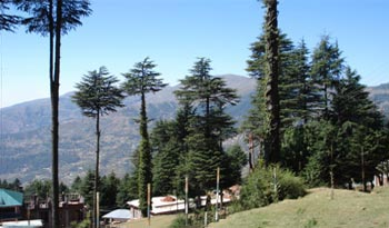 Jammu - Katra - Mata Vaishno Devi - Patnitop - Jammu Tour
