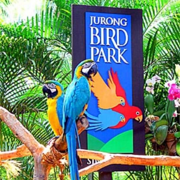 Singapore Tour Package In Dehradun