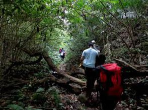 Trekking In Coorg Package