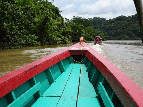 Down Boat Ride