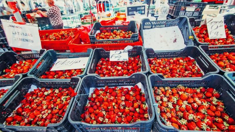 Vibrant Vilnius Weekend Break With Food Market Visit