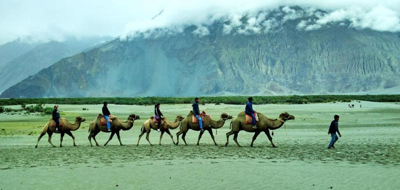 Explore Ladakh (9D/8N) Package