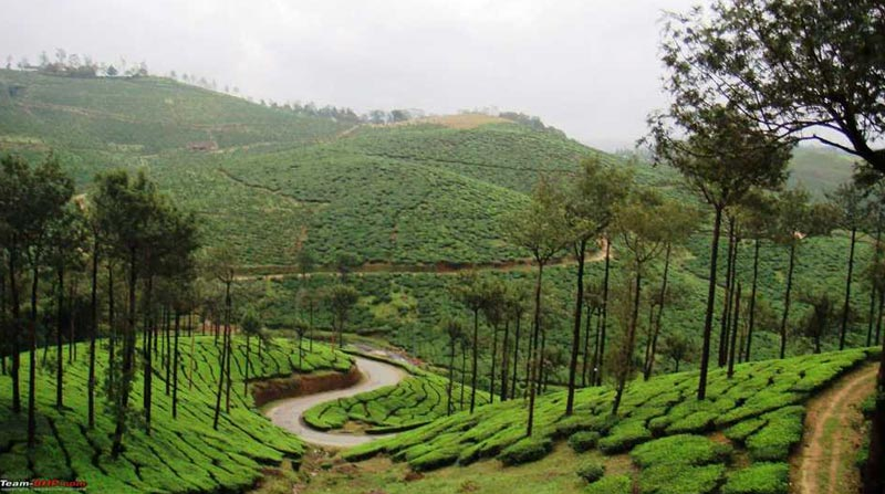 Amazing Coorg  Tour
