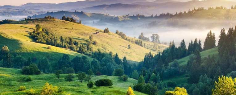 Mesmerizing Hill Stations Of Tamil Nadu Package