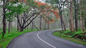 Mysore Coorg Chikmagalur Tour Package