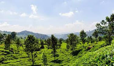 Diverse Natural Wonders Of South India Tour