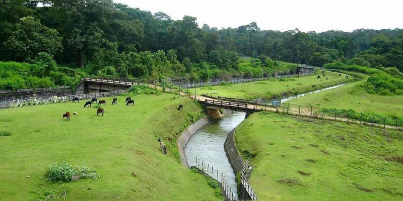 Incredible Coorg Tour