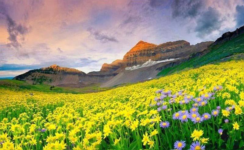 3 Nights Valley Of Flowers Package