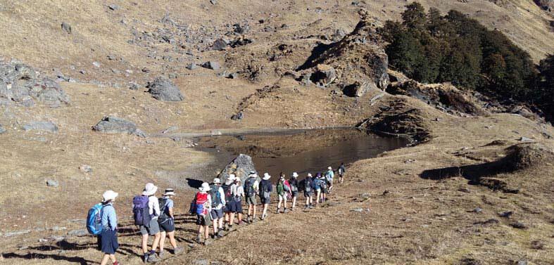 Kauri Pass Tapovan Trekking Tour
