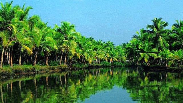 Amazing Cochin Trip Tour