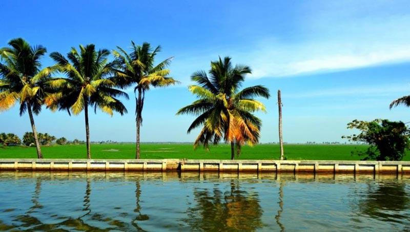 Itty Bitty Kerala Tour