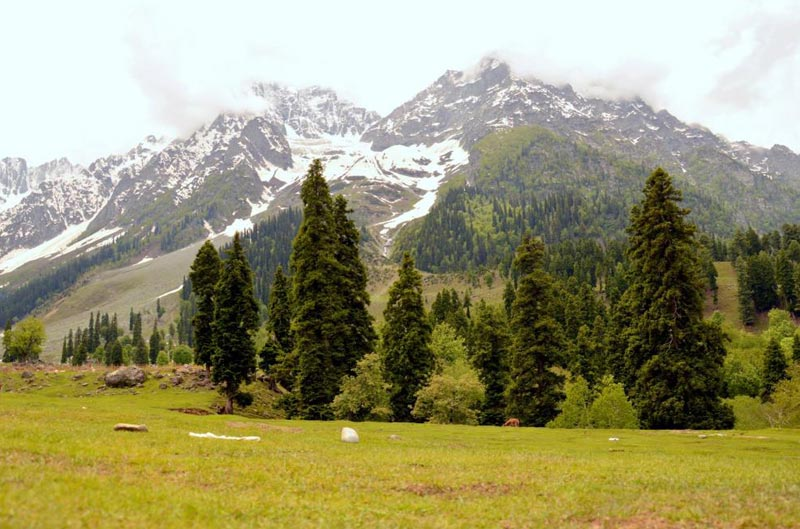 Romantic Kashmir Package