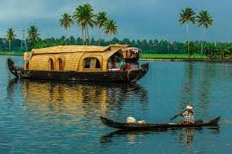 Cochin - Munnar - Cochin Tour