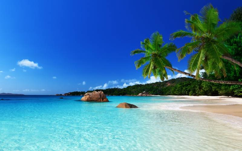 Andaman Package 7 Days