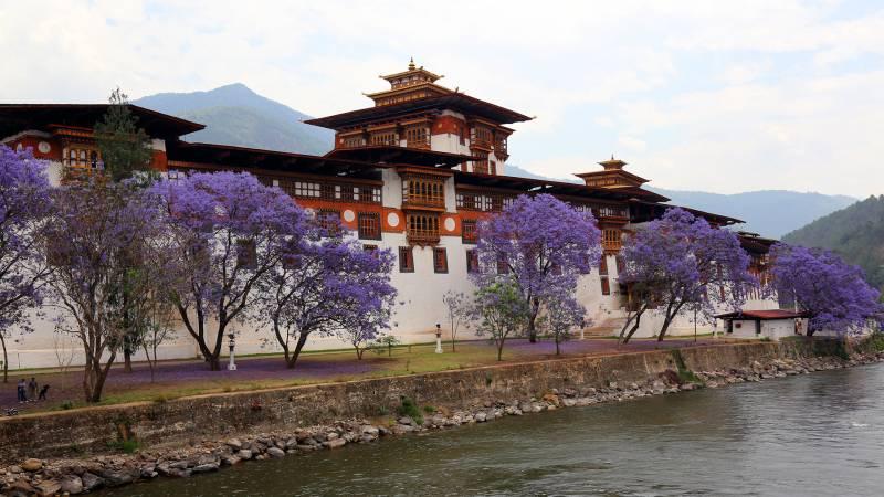 Freedom Bhutan Tour