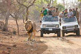 Ahmedabad With Sasan Gir Tour