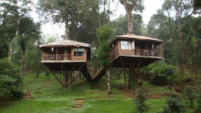 Periyar Tour With Treehouse
