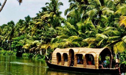 Cochin - Munnar - Alleppey - Kovalam Tour