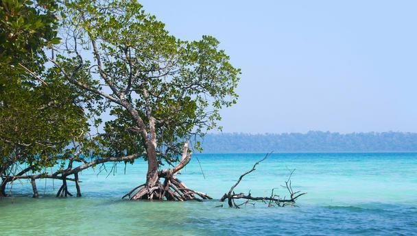 Andaman Remarkable Tour