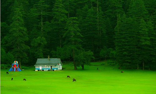 Himachal Tour Package .