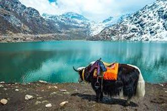 Silk Route - Sikkim Tour