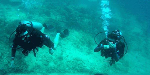 Sapi Island Discover Scuba Diving Tour