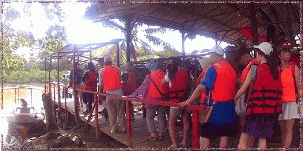 Kelly Bay Mangrove And Kawa Kawa River Cruise 1 Day Tour