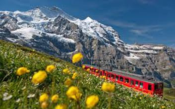 Scenic Swiss 7 Nights / 8 Days Tour