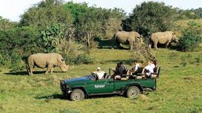 Garden Route Safari Self Drive Tour