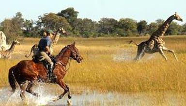 Mobile Botswana Horseback Safari, Limpopo Valley Tour