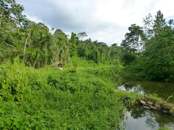 Grand Ecuador Including Amazon - Galapagos Cruise Tour