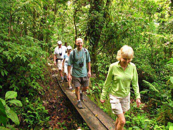 Walking In Costa Rica Self Drive Tour