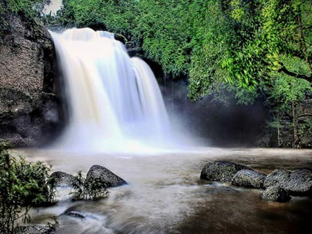 1 Day Khaoyai National Park & Trekking Tour