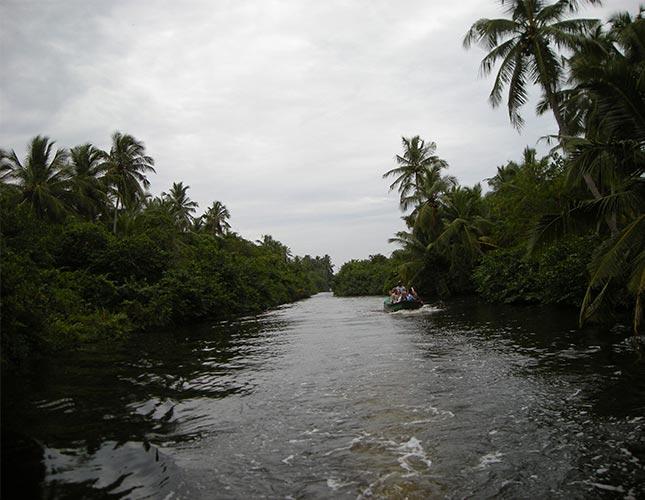 Negombo Day Tour