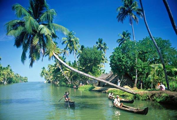 Cochin, Munnar, Alleppey, Cochin Tour