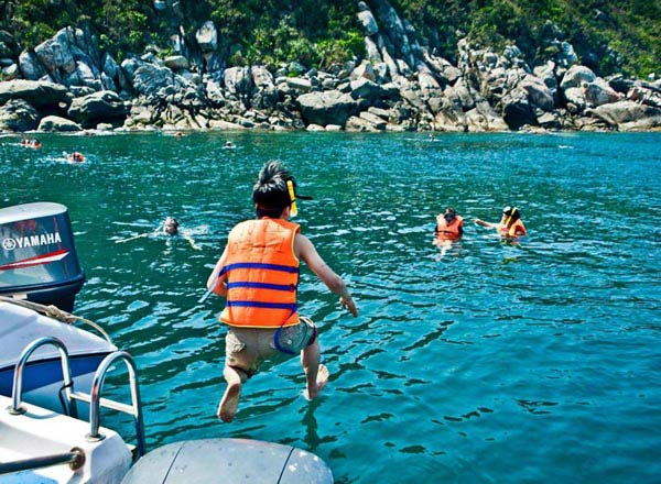 Full Day Cham Island Tour
