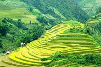Sapa – Lao Chai – Ta Van Home Stay – Giang Ta Chai Tour