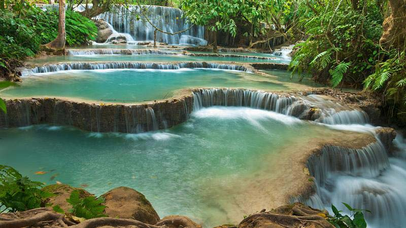 Luang Prabang – Rice Experience – Kuang Si Waterfalls Tour