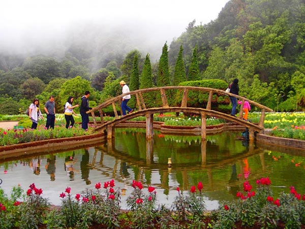 Chiang Mai Full Day Doi Inthanon National Park Tour