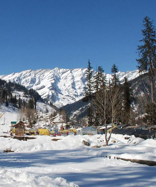Romantic Shimla Kullu Manali Honeymoon Package