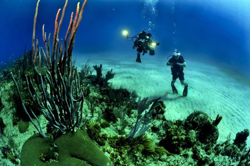 Scuba Dive Packages Tour