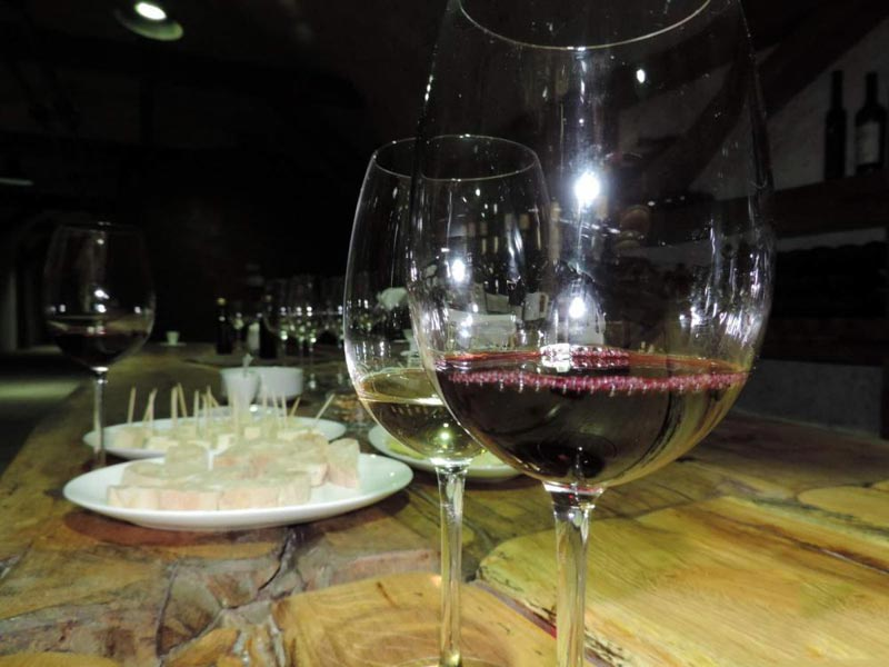One Day Wine Tour In Tbilisi