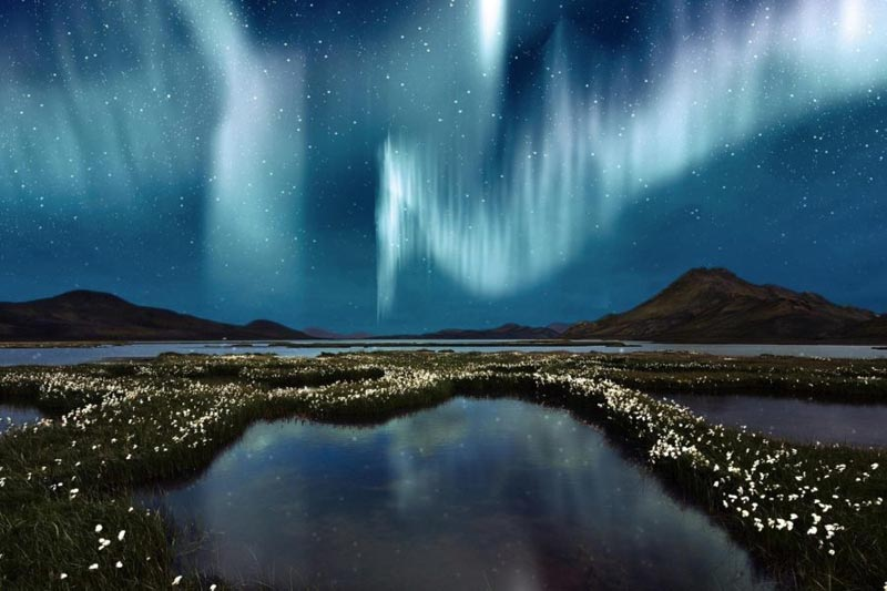 Arctic Rail Explorer - Quest For Northern Lights Package
