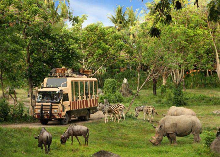 Bali Safari And Marine Park Tour